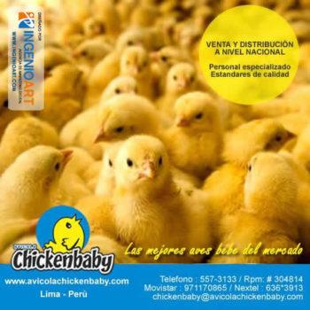 Diseños para Facebook de avicola Peru